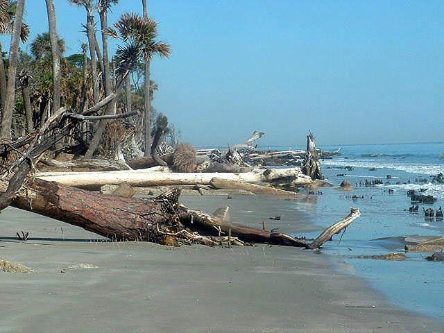 beach before renourishment