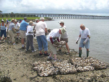 2008 laying out oyster reef