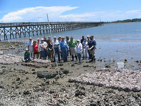 2006 oyster reef team