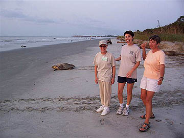 Triumphant Turtle Ladies