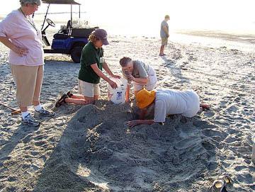 Nest #17 Dig & Crawl