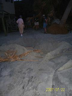 Nest #59 Showing Beach Erosion