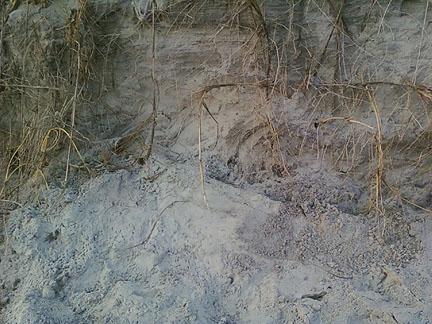 creekside crawl